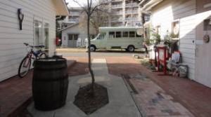 ジョンソンタウンバス