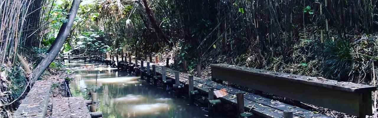 ※延期日程決定:つくたま塾「杉戸町・南側用水路の再生と今後の地域づくり」のご案内